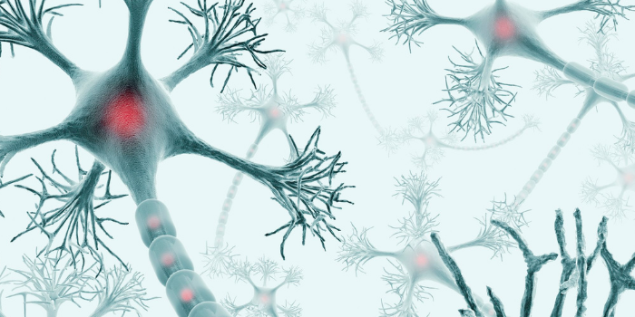 Global Alzheimer's Disease Market